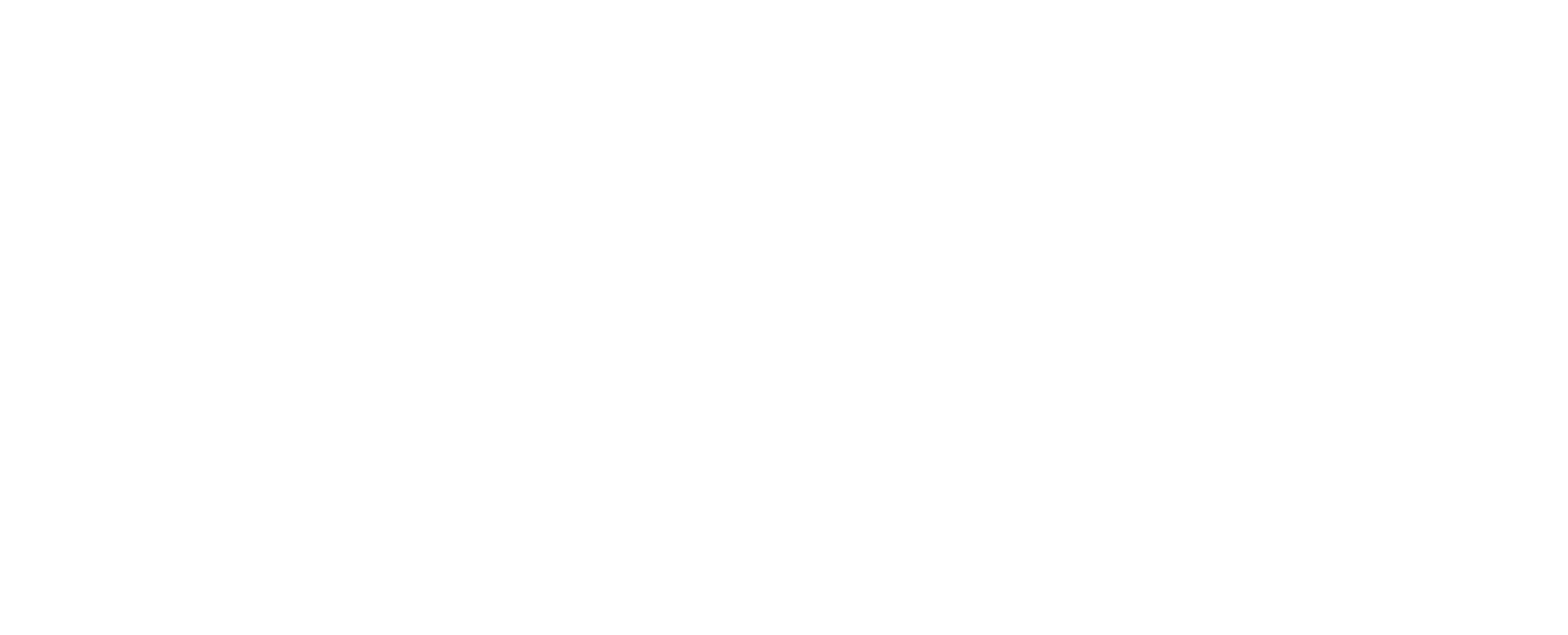 diebels_Logo_white